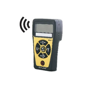 805HP Wireless Hand Held Digital Weight Indicator, LCD Display, ABS, IP65